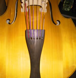 Six String Double Bass